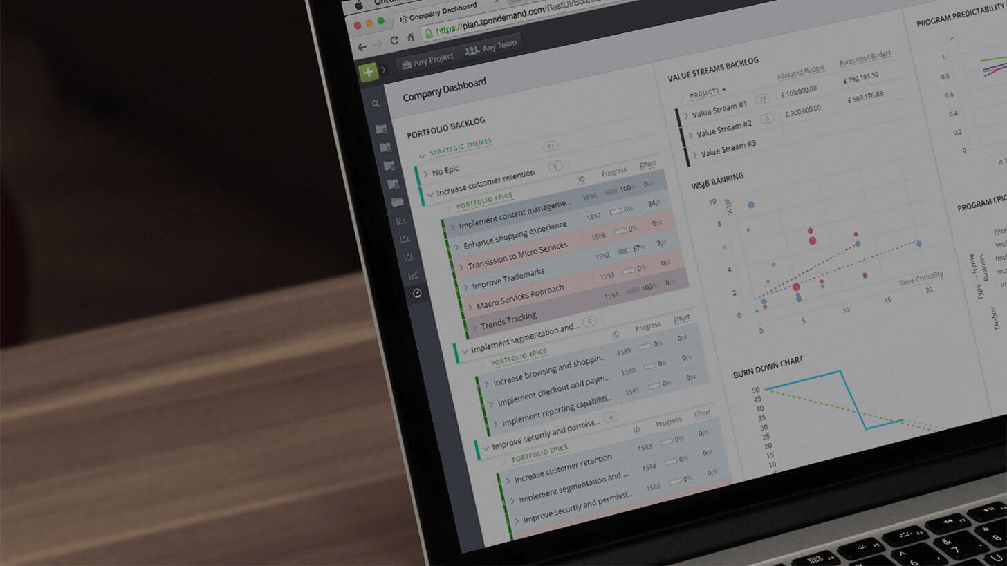 Enterprise Agile Planning